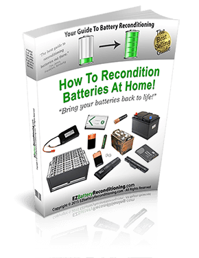 battery recondition book cover